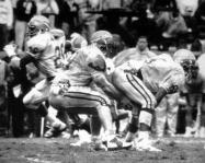 Jackets In College: #49 FB Dayne Williams, Florida State University 1988 The Sporting News - All-American - Honorable MentionHighlights of the famous Puntrooskie game in which Williams participated in.